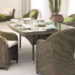 Orlando dining armchairs and table