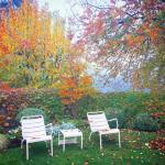 Luxembourg-low-chair-5.jpg